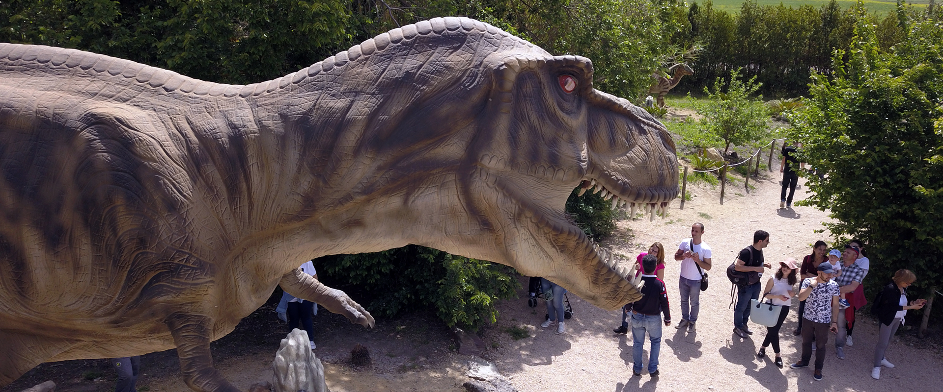 T-Rex Parco Sardegna in miniatura